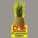 Dole-plantation Souvenir Magnet